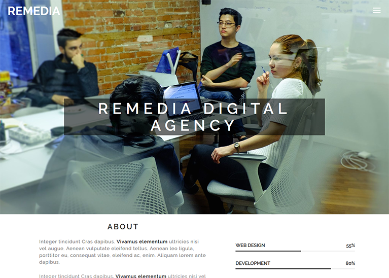 REMEDIA DIGITAL AGENCY