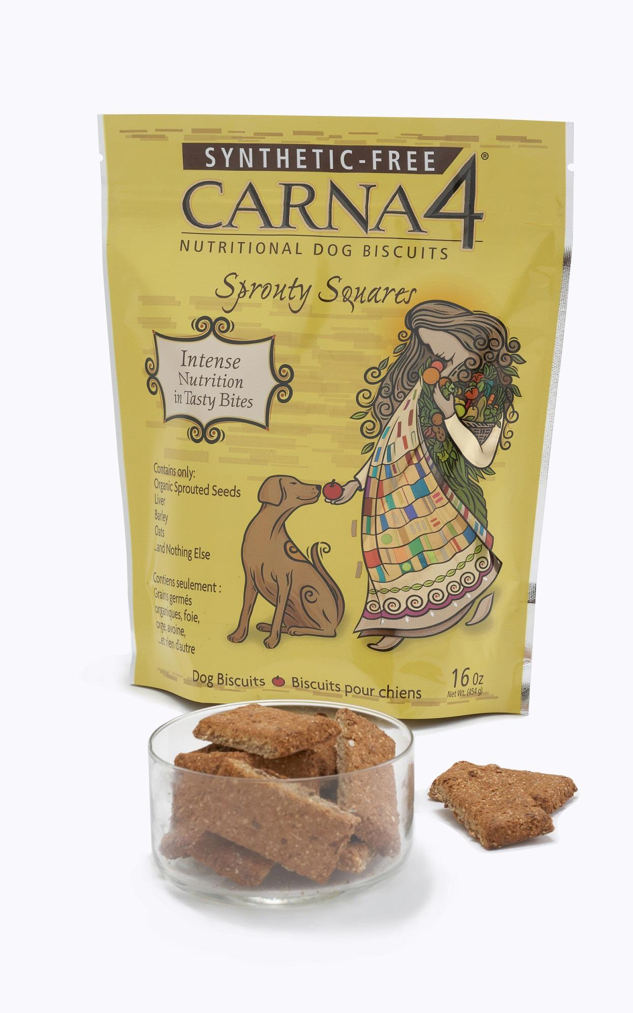 Carna4 Sprouty Square Biscuits